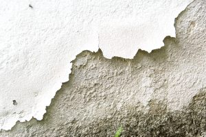 Moisture Problems – Causes and Detection