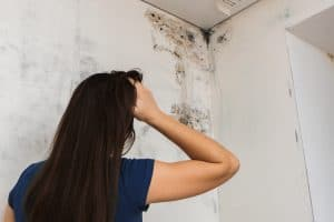Mold and Mildew Can Be Hazardous To Your Health